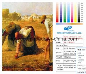 Rome Art Canvas Matte Pure Cotton (Waterproof)