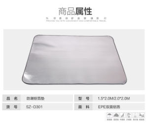 Foldable Picnic Mat for Outdoor Camping pictures & photos