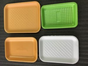 Made in China Cheap Plastic Disposable Frozen Food Tray pictures & photos