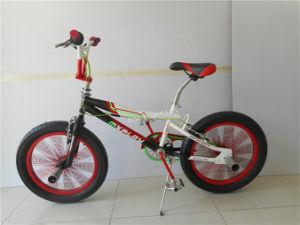 """20"""" Mini Free Style BMX Bike (AOK-BMX003) pictures & photos"""