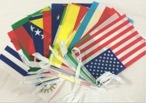 Custom Whole Sale High Quality Polyester National Hand Flag pictures & photos