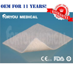 FDA CE Medical Alginate Dressing for Wound Care/ Venous and Arterial Leg Ulcer/ Diabetic Ulcer/ Donor Sites pictures & photos