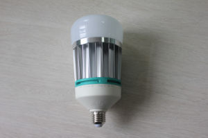 Hot Selling E27 Warm White and Daylight LED Bulb Light with Ec RoHS pictures & photos
