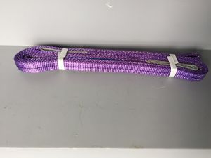 "Size 1"" High Quality Webbing Sling&Lifting Sling pictures & photos"