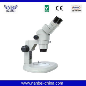 Hot Sell Bm Series Binocular Biological Microscope pictures & photos