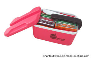 Rectangle Lunch Box Chewing Gum 3color pictures & photos