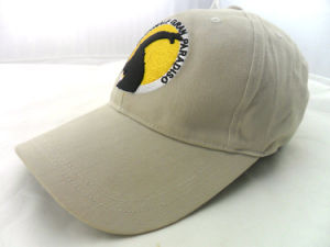 Custom Mens Cap Hat Styles for Wholesale pictures & photos