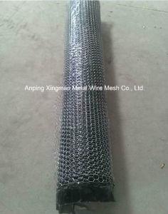 Chicken Wire Mesh/Hexagonal Wire Netting pictures & photos