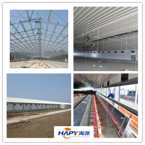 Modern and Beautiful Light Steel Structure Poultry Chicken House Building pictures & photos