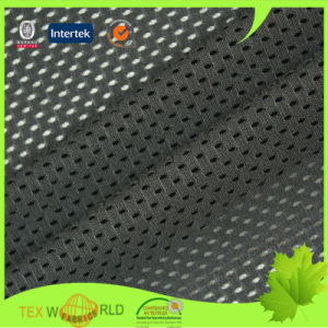 Warp Knitting Stretch Textile Mesh Fabric for Garment (JP2105)