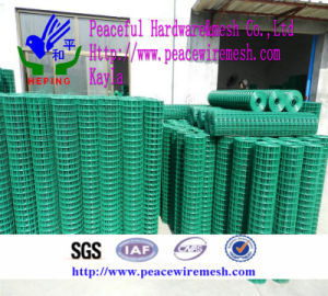 PVC Coated Welded Wire Mesh Factory pictures & photos