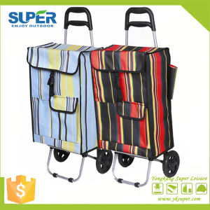 Folding Smart Shopping Cart (SP-532) pictures & photos