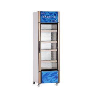 308L Vertical Glass Single Door Showcase