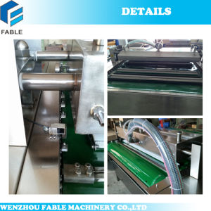 Dz1000 Floor Type Vacuum Packing Machinery pictures & photos