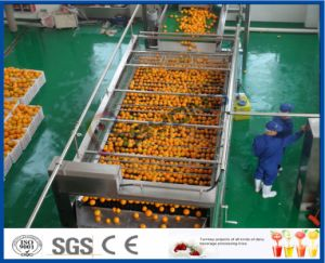 orange and lemon processing machine pictures & photos