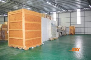 LCL Ocean Freight From Hongkong --Colombo pictures & photos