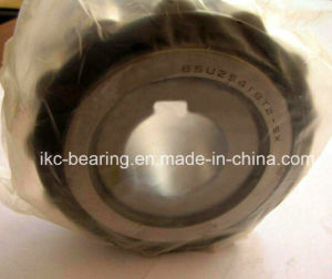 Eccentric Bearing 65uzs419t2X Sx or 85uzs89 Bearing for Gearbox Koyo NTN pictures & photos