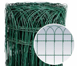 Green Decorative Wire Bordering Fence China Factory pictures & photos