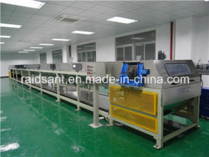 Raidsant Petroleum Resin Steel Belt Cooling Pelletizing Machine