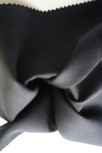 Check Wool Fabric of 100% Wool pictures & photos