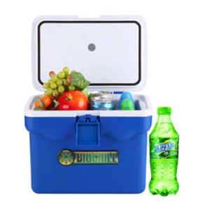 Mini Fishing Cooler Box 9 Liter for Temperature Insulation pictures & photos