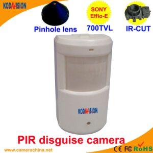 "Sony CCD 700tvl PIR ""Hidden Camera"" pictures & photos"