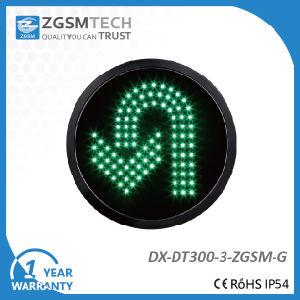 300mm Green LED Turn Signal Modules