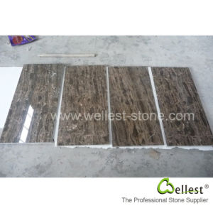 Coffee Brown Marble Slab/Tile pictures & photos