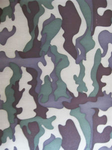 Fy-28 600d Oxford Camouflage Printing Polyester Fabric pictures & photos