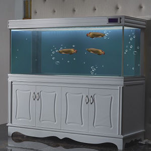 Luxury Fish Tank
