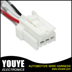 Custom Electronic Wire Harness with Terminals pictures & photos