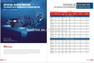 YEJ Brake Motor with High Quality Ce Motor pictures & photos