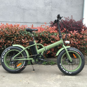 Europe Popular Fat Tire Electric Bicycle for Rental Service
