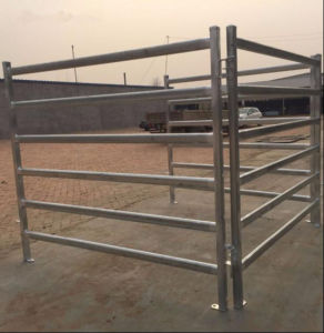 Australia 6rails Heavy Duty Horse Panel/Sheep Panel/Used Livestock Panel pictures & photos