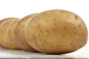 Potato, Fresh Potato pictures & photos