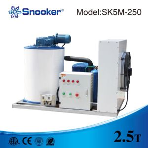 Hot Sell Flake Ice Machine pictures & photos