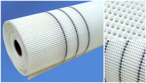 Alkali-Resistant Fiberglass Net for Eifs 10X10mm, 160G/M2 pictures & photos