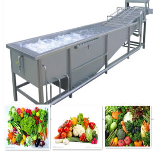 Water Saving Air Bubble Vegetable&Fruit Washing Machine pictures & photos