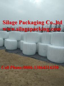 Silage Bale Film 500X1800X25um Popular in Pakinstan pictures & photos