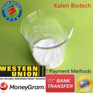 Factory Supply Amino Supplement Creatine Monohydrate 6020-87-7