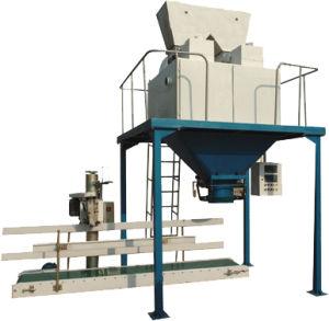 Granule/Powder Packing Machine/Packing Machine (LCS-B Series)