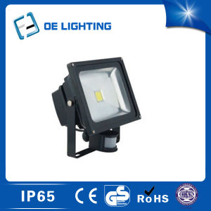 Certificate Quality 30W LED Flood Light with Sensor pictures & photos