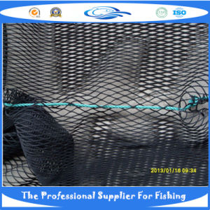 Nylon Knotless Fish Net (SDC17820) pictures & photos