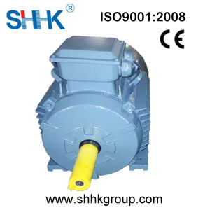 AC Squirrel Cage High Efficiency Electric Motor 180kw pictures & photos
