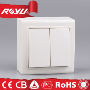 10A ABS Material Surface Type 2 Gang Switch pictures & photos