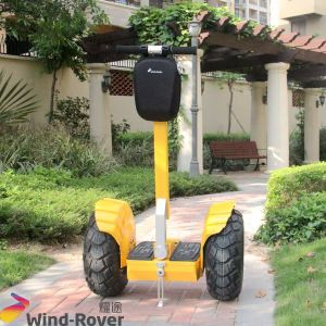 2 Wheel Electric Stand up Electric Chariot Balace Scooter pictures & photos