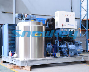 Maker Machine for Flake Ice China Top1 Largest Ice Maker Manufacturer pictures & photos