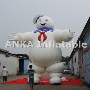 20FT Red Inflatable Large Kidney Cartoon Character Attractive pictures & photos