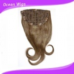 Hot Beauty Remy Clip in Hair Extension (CH-012) pictures & photos