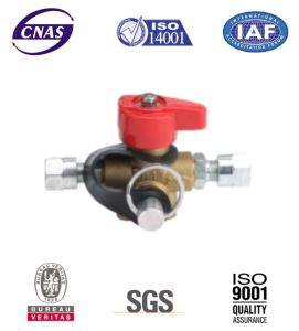 CNG Cylinder Valve - CNG Valve - Cylinder Valves for Vehicle (QF-T3H) pictures & photos